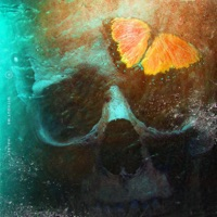 Without Me - Single - Halsey mp3 download