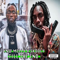 Till the End (feat. Skooly) - Single - YNW Melly mp3 download