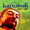 Desert Flower Karunesh MP3