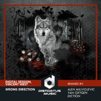 Wrong Direction (Alen Milivojevic Remix) Digital Session & Vincent Hiest MP3