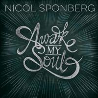 The Solid Rock Nicol Sponberg