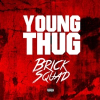 Brick Squad - Young Thug mp3 download
