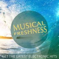 Playback Rewind (feat. Rana) [Radio Edit] Roberto Sol & Florito MP3