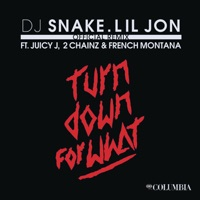 Turn Down for What (Remix) [feat. Juicy J, 2 Chainz & French Montana] - Single - DJ Snake & Lil Jon mp3 download