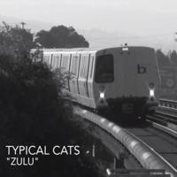 Zulu Typical Cats MP3