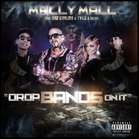 Drop Bands On It (feat. Wiz Khalifa, Tyga & Fresh) - Single - Mally Mall mp3 download