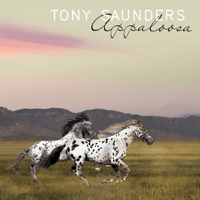 Appaloosa (feat. Bill Champlain) Tony Saunders