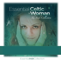 Riverdance The Celtic Orchestra