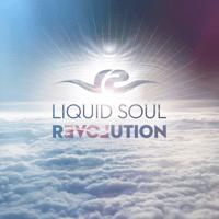 Limitless Liquid Soul
