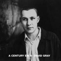 Shine David Gray