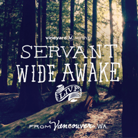 Refiner's Fire (feat. Jeremiah Carlson of The Neverclaim) [Live] Vineyard Worship