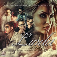 Linda (Remix) [feat. Ozuna, Juanka, Lionexx & Sammy & Falsetto] - Single - Young Izak mp3 download
