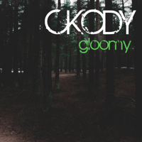 Vamos Ckody