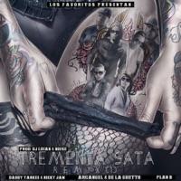 Trementa Sata (Remix) [feat. Daddy Yankee, Nicky Jam, De La Ghetto, Arcángel & Plan B] - Single - DJ Luian mp3 download
