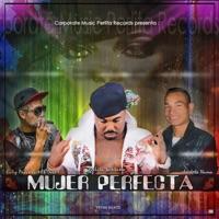 Mujer Perfecta (Yenn Beats) [feat. Babyprincii El Duro & La J Nueva] - Single - Perlita Santana mp3 download