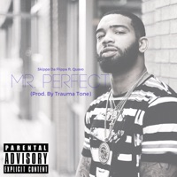 Mr. Perfect (feat. Quavo) - Single - Skippa Da Flippa mp3 download