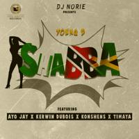 Shabba (feat. Young D, Ayo Jay, Kerwin Dubois, Konshens & Timaya) Dj Norie MP3