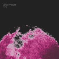 Fly High Pink Moon