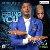 Feeling You (feat. Tekno) - Single - Rima mp3 download