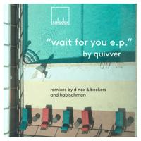 Wait for You (D-Nox & Beckers Remix) Quivver