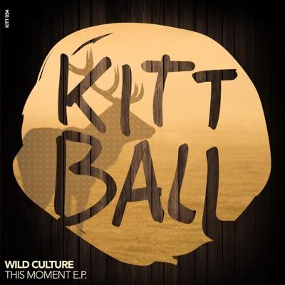 Summer Swaggin - Wild Culture mp3 download