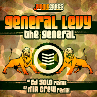 The General (Ed Solo Remix) General Levy MP3