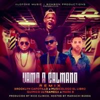 Vamo a Calmano (Remix) [feat. Quimico Ultramega, Musicologo & Mark B] - Single - Brooklyn Capotillo mp3 download