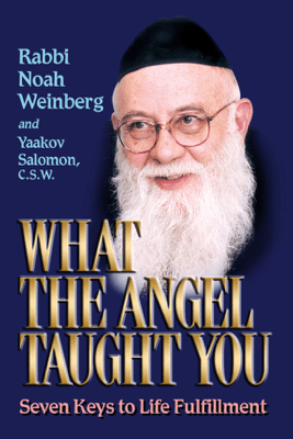 What the Angel Taught You - Rabbi Noah Weinberg
