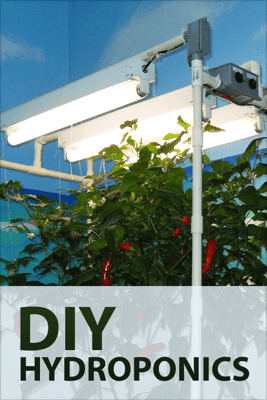 DIY Hydroponics - Authors & Editors of Instructables
