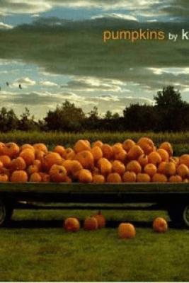 Pumpkins - Ken Robbins