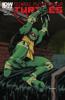 Kevin Eastman, Tom Waltz & Dan Duncan - Teenage Mutant Ninja Turtles #1  artwork
