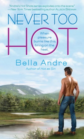 Never Too Hot by Bella Andre PDF Download