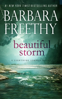 Beautiful Storm - Barbara Freethy pdf download