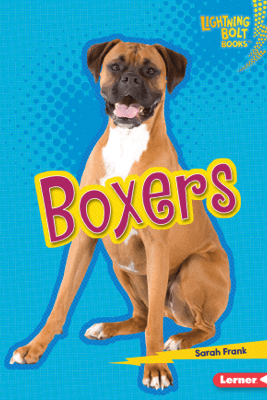 Boxers - Sarah Frank