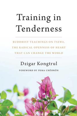 Training in Tenderness - Dzigar Kongtrul