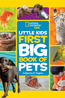 Little Kids First Big Book of Pets - Catherine Hughes