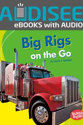 Big Rigs on the Go (Enhanced Edition) - Anne J. Spaight
