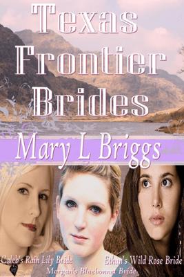 Texas Frontier Brides (Volumes 1-3 & A Bride for Hannigan) - Mary L. Briggs pdf download