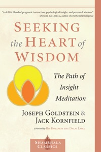 Seeking the Heart of Wisdom - Joseph Goldstein & Jack Kornfield pdf download