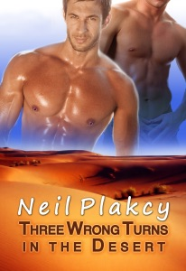 Three Wrong Turns in the Desert - Neil S. Plakcy pdf download