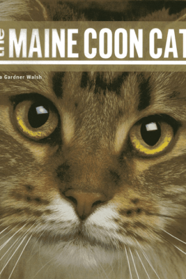 The Maine Coon Cat - Liza Gardner Walsh
