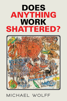 Does Anything Work Shattered? - Michael Wolff