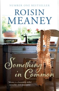 Something in Common - Roisin Meaney pdf download