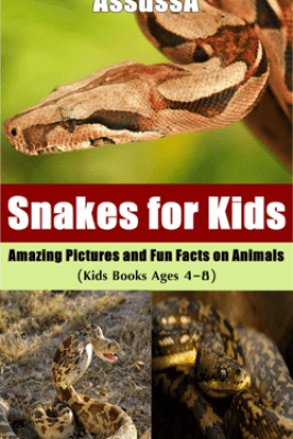 Snakes for Kids :Amazing Pictures and Fun Facts on Animals - AssussA