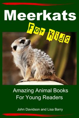 Meerkats For Kids: Amazing Animal Books for Young Readers - John Davidson & Lisa Barry
