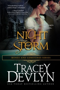Night Storm - Tracey Devlyn pdf download
