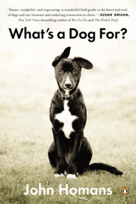 What's a Dog For? - John Homans
