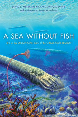 A Sea without Fish - Steven M. Holland, Richard Arnold Davis & David L. Meyer