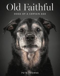 Old Faithful - Pete Thorne pdf download