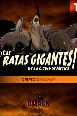 Las ratas gigantes, CDMX - Oxlack Castro